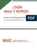Maiz y Sorgo FC 2012.pdf