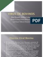 52268696 Virus de Bovinos