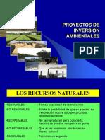 1 Proyectos de Inversion Ambientales