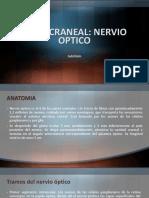 Nervio Optico II Par Craneal