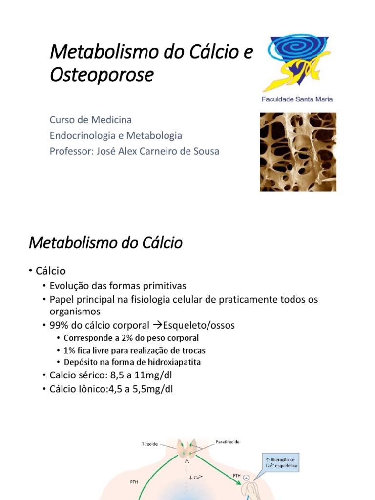 Tips para bilirrubina metabolismo