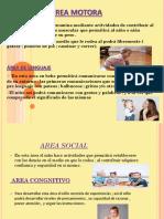 PPT-PORTAFOLIO.pptx
