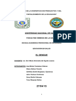 EL-DENGUE-educacion-en-salud.docx