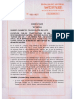 07.04.08 CNSTestimonio de Constitucion