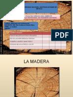 Maderas Final