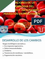 Variaciones de La Morfologia Del Eritrocito e Inclusiones
