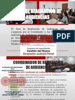 Area de Realizacion de Audiencias