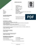Curriculum Luis Bac