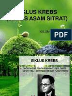 Siklus Asam Sitrat 2