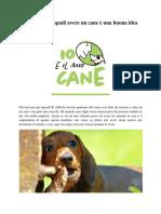 3 Motivi Per i Quali Avere Un Cane è Una Buona Idea (1)