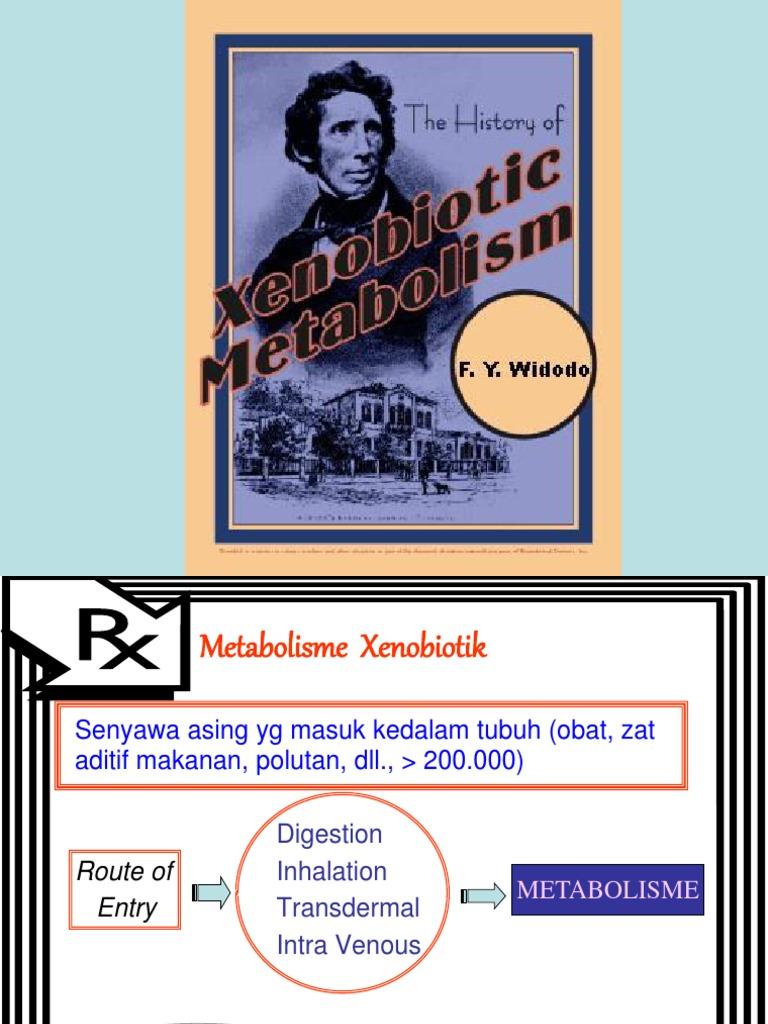 Xenobiotic 2013