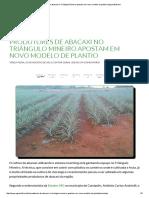 Produtores de Abacaxi No Triângulo Mineiro Apostam Em Novo Modelo de Plantio _ Agrosoft Brasil