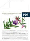 Tratado Das Plantas Medicinais_ Faça Grátis o Download Do Livro - GreenMe.com