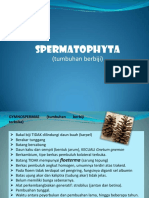 sPERMATOPHYTA(credit to the one who post this in the first time)