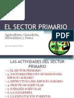 elsectorprimario-100121125233-phpapp02