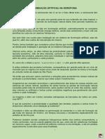 ILUMINA-P.pdf