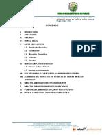Declaracion de Impacto Ambiental Pangoa