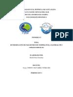 Informe-5 DE OCEANOGRAFIA+
