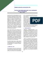 15_litio.pdf