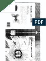 1° AÑO  OCHO PATAS Y UN CUENTO.pdf