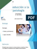 Introducción a La Patología 2