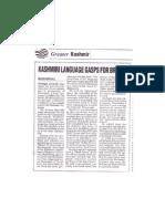 Kashmir language