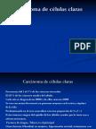 Carcinoma de Células Claras Nuevo Presentación de Microsoft PowerPoint (2)