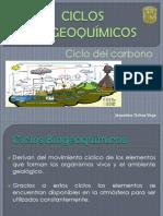 CICLOS BIOGEOQUÍMICOS (1)