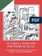 svvfoto.pdf