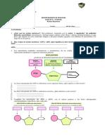 GUIA Acidos Nucleicos (1)