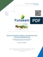 Hacia Un Nuevo Modelo de Negocio de Los Biocarburantes - Funseam (1)