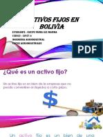 Activos Fijos en Bolivia-costos Agroindustriales
