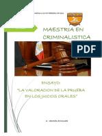ENSAYO DEL SPA- MAEST 3°