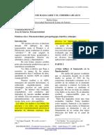 hologramatica2-V1_pp165-172.pdf
