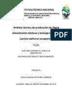 Sheila Guadalupe Rubio Cabrera.pdf