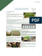 Producción de Forraje Verde Hidropónico Costo 3