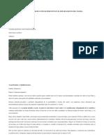 Produccion de Pimenton
