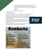 El Té de Kombucha
