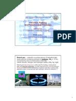 PRPP 2013 Natural Gas