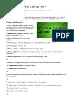 Idioms and Phrases Capsule - PDF.pdf