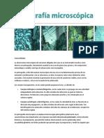 PETROGRAFIA.docx