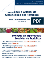 25-02 Classificacao Olericultura.pdf