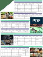 Program PDF.compressed