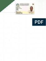 stelvio coelho.pdf