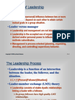 The Nature of Leadership - Copy