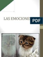 Gato Emociones