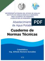 V13 NORMAS TECNICAS