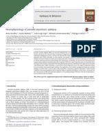 Neurophysiology of Juvenile Myoclonic Epilepsy