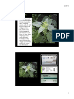 Curs 7 - Urticaria.pdf