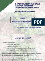Clase Virus FITO
